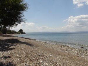 Η παραλία μπροστά στο Alhena ενοικιαζόμενα δωμάτια - Χρόνια (Λίμνη Ευβοίας) διαμονή